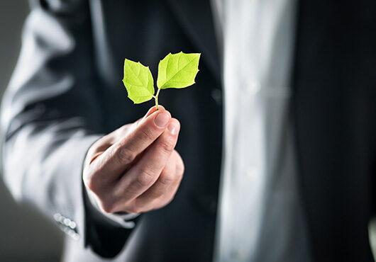 Eco friendly environmental lawyer