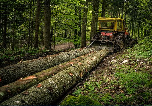 Skidder pulling logs